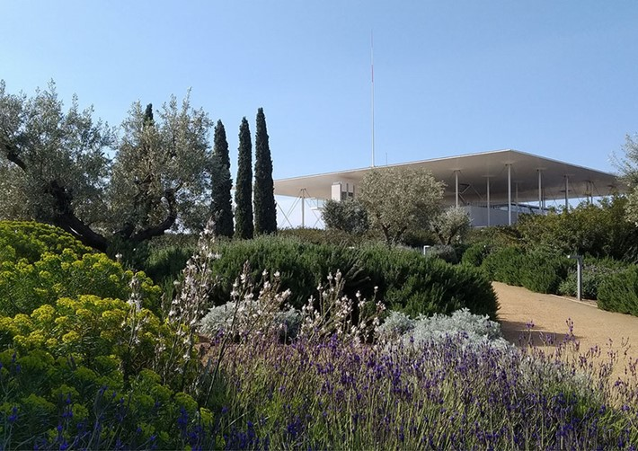 Stavros Niarchos Park at the SNFCC is one of the largest public green spaces in Athens. Photo credit: SNFCC